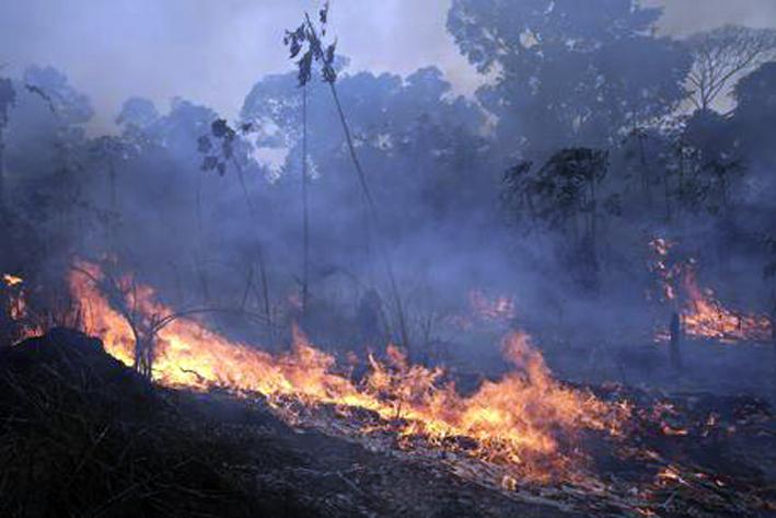 ++ Amazzonia:ministro Brasile, Governo rifiuterà aiuti G7 ++